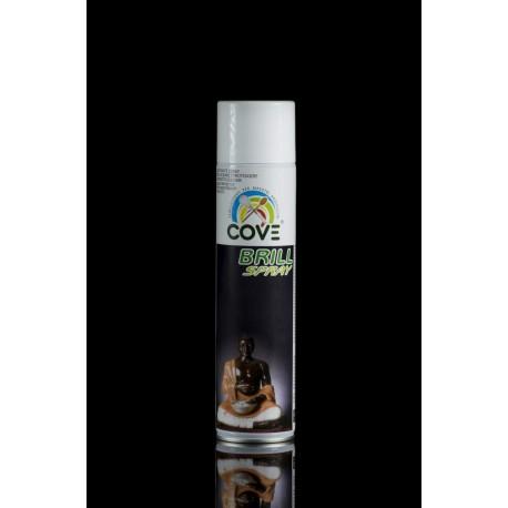 Brill Lacca Spray ml 400