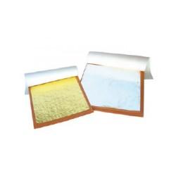 Argento in fogli-confezione 25pz